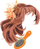 Wig and hairbrush. Isolated on the white. Illustration Stock Photos