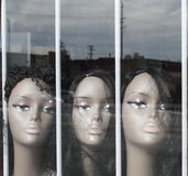 Wig Mannequins in a Window Stock Photography