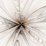 Wiggen in Bruin, Licht Stock Fotografie