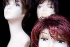 Wigs. Mannequin heads with hair wigs in a hairdressing salon Stock Images