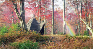 Wigwam in the autumn forest. Indian tepee in autumn forest built hippie flower children for outdoor life in an old beech forest. Inside the fire burning and the royalty free stock photo
