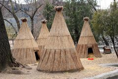 Wigwam house in the national park Stock Images