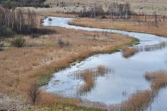 Wijąca rzeka wśród drzew, krzaków i trawy w nizinach w polu w wiosna czasie, zdjęcie stock
