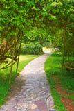 Wijąca ścieżka prowadzi ustronny spokojny miejsce Fotografia Royalty Free