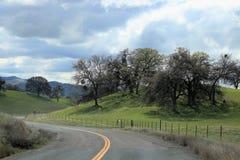Wijąca droga i wieś w sekwoja lesie państwowym Kalifornia zdjęcia royalty free