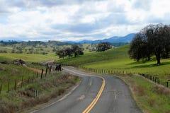 Wijąca droga i wieś w sekwoja lesie państwowym Kalifornia obraz royalty free
