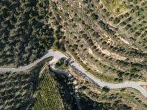 Wijąca droga przechodzi przez doliny oliwni gaje fotografia royalty free