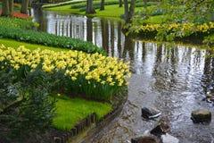 Wijąca rzeka w łące Fotografia Stock