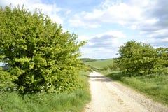 Wijąca droga Zdjęcie Royalty Free
