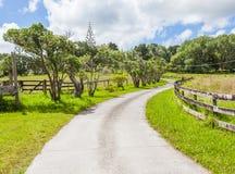 Wijąca wiejska droga przez ziemi uprawnej z jasnym niebieskim niebem Zdjęcia Royalty Free