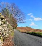 Wijąca wzgórze droga zdjęcie royalty free