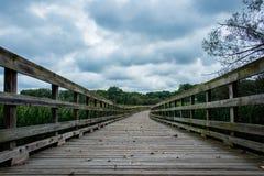 Wijący most zdjęcie royalty free