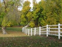Wijący ogrodzenie przy parkiem Obrazy Royalty Free