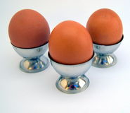 Wij drie eieren Royalty-vrije Stock Foto