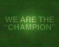Wij zijn de kampioen op gras stock afbeelding
