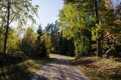 Wijąca kolorowa wiejska droga Zdjęcie Royalty Free