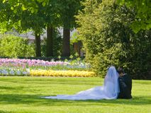 Wijd en bruidegom in park Royalty-vrije Stock Foto's