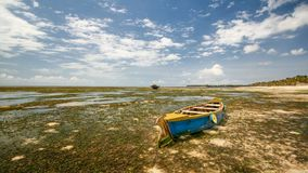 Wijd geschoten van lege blauwe en gele boot op zand met overzeese kelp stock fotografie