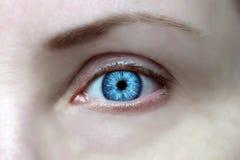 Wijd open ogen, heldere blauwe iris, look ahead stock afbeelding