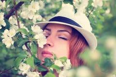Wijfje in de bloem van de appelboom Stock Fotografie