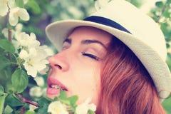 Wijfje in de bloem van de appelboom Royalty-vrije Stock Afbeelding