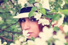 Wijfje in de bloem van de appelboom Stock Afbeeldingen