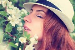 Wijfje in de bloem van de appelboom Royalty-vrije Stock Fotografie
