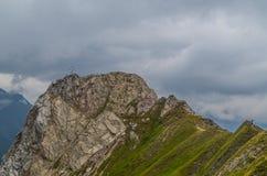 Wijfje die zich op de rand in Lechtal-Alpen, Oostenrijk bevinden Royalty-vrije Stock Afbeeldingen