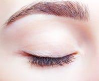 Wijfje gesloten oog en brows met dagmake-up Royalty-vrije Stock Foto's