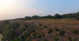 Wijfje jogger met persoonlijke trainer in platteland stock video