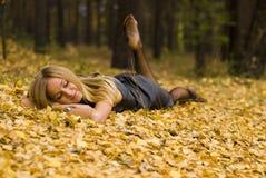 Wijfje op bladeren Stock Foto's