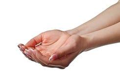 Wijfje tot een kom gevormde handen Stock Foto