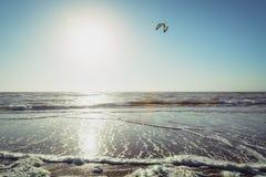 Wijk aan Zee, die Niederlande - 5. Juni 2016: einsames kitesurfer auf dem Nordseestrand Stockfoto
