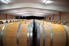 Wijn cellars03 Stock Afbeeldingen