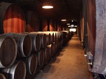 Wijn Celler Royalty-vrije Stock Foto's