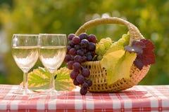 Wijn en druif Stock Afbeelding