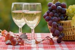 Wijn en druif Stock Foto