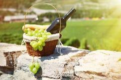 Wijn en Druiven Royalty-vrije Stock Foto's