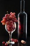 Wijn en Druiven Royalty-vrije Stock Afbeelding