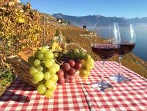 Wijn en Druiven royalty-vrije stock fotografie