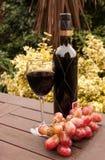 Wijn en druiven op het terras Royalty-vrije Stock Foto's