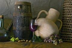 Wijn en fig. Royalty-vrije Stock Afbeelding