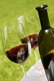 Wijn en Fles royalty-vrije stock fotografie