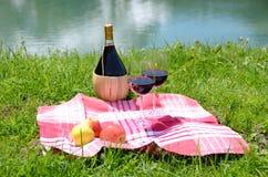 Wijn en vruchten bij een picknick wordt gediend die Royalty-vrije Stock Fotografie