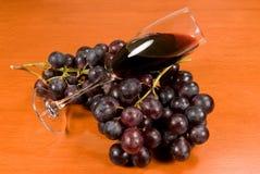 Wijn en wijnstok. Stock Foto