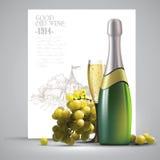Wijn en wijnstok Royalty-vrije Stock Foto's