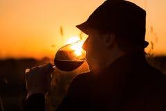 Wijn en zonsondergang 2 Stock Afbeeldingen