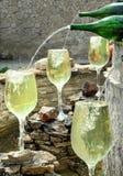 Wijn fontain royalty-vrije stock foto's