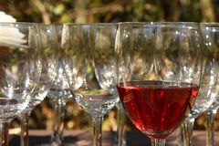 wijn glas Stock Foto