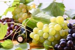 Wijn in glas Royalty-vrije Stock Afbeeldingen